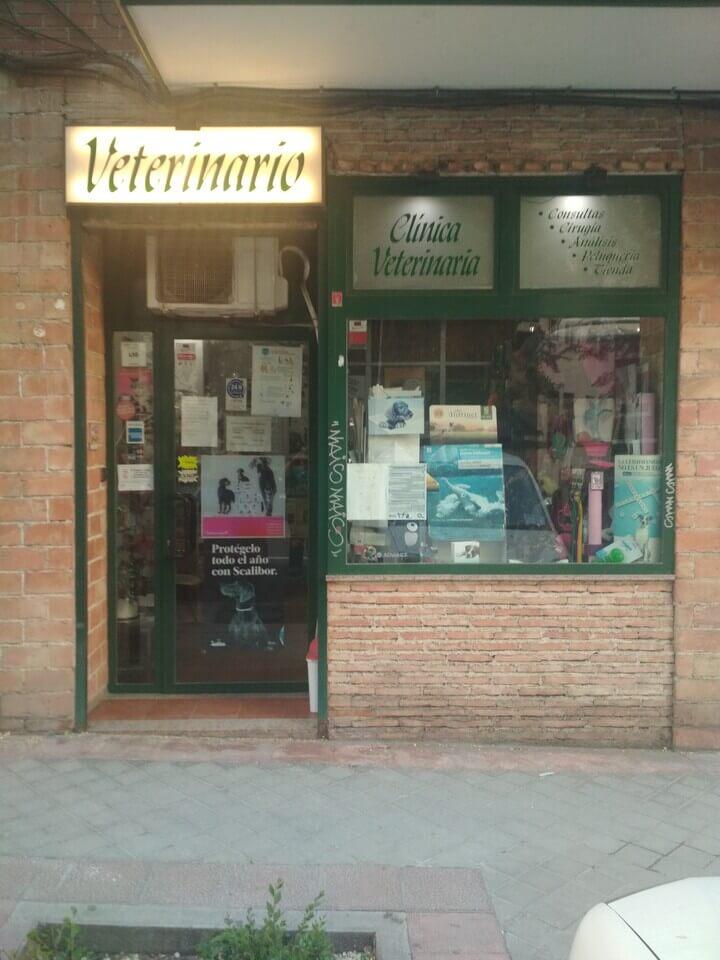 acceso a la clínica del mejor veterinario de Carabanchel