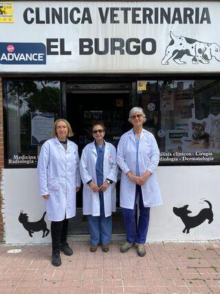 Clínica Veterinaria El Burgo